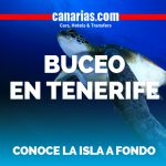 Si buscas turismo alternativo: Buceo en Tenerife